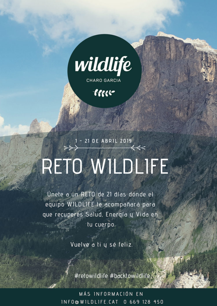 RETO WILDLIFE
